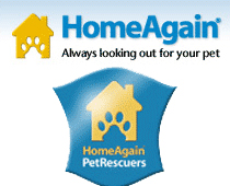 home-again-logo02web